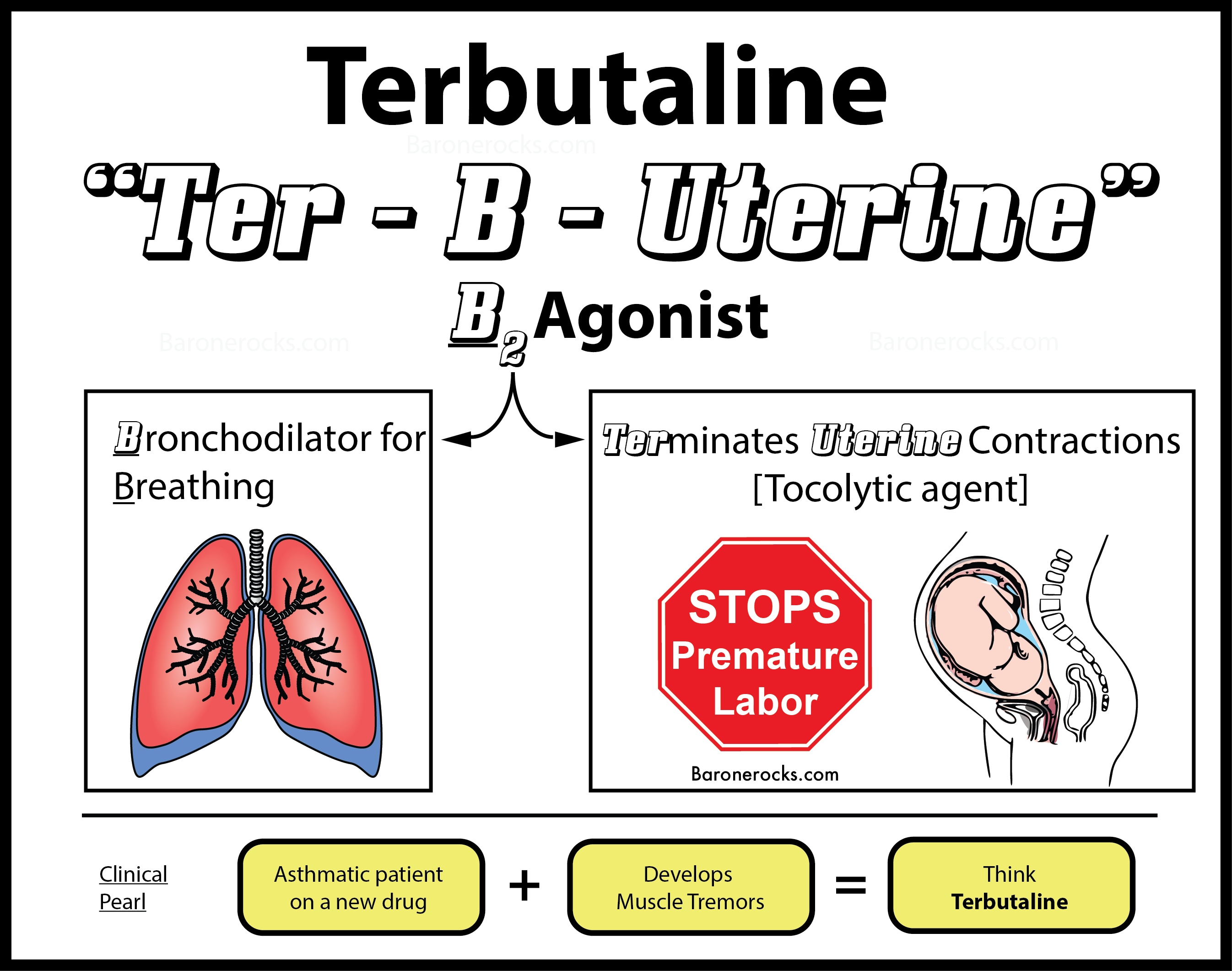 Terbutaline Injection In Pregnant
