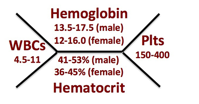 med student secrets   here    s the classic hematology  quot fishbone quot